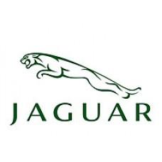 Программирование ключей, пультов для Jaguar (Ягуар)